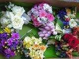 6 flori