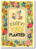 bloom where you.re planted
