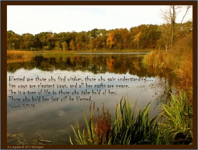 proverbs 3_13