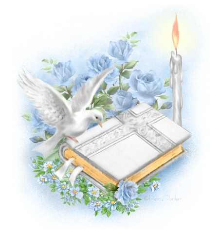 BIBLE DOVE