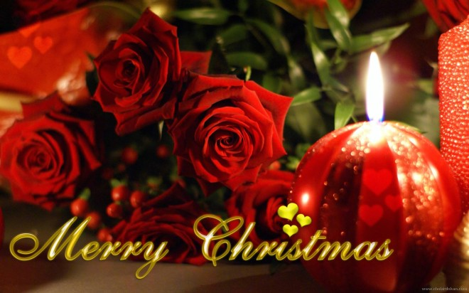 merry-christmas-flower-wallpaper